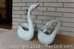 Garden Swans. A