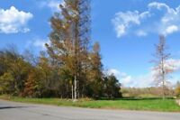 Orillia - North Ward Building Lot - Across From Lake Couchiching