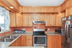 TWO APARTMENT IN PARADISE REDUCED TO SELL!!!!!!! St. John's Newfoundland image 3