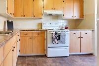 Beautiful 1 bedroom apartment with hardwood  for rent in Montrea