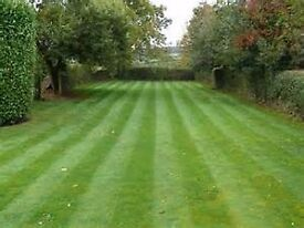 Garden maintenance/ Clearance &Waste Removals (e.g. lawn mowing, hedge trimming , tree cutting )