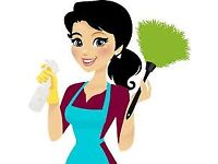 Professional cleaning service#same day service