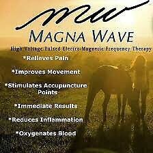 Magnawave PEMF Therapy