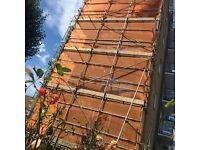 Lakha scaffolding