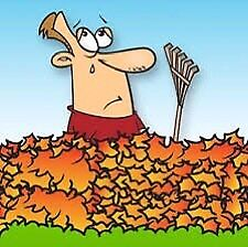 Leaf raking services available.