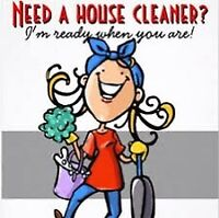 Let me do the cleaning!!