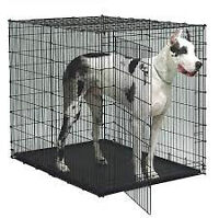 Colossal Dog Crate - for Great Dane,Newfoundland,Mastiff, save $