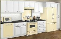 Elimira Northstar 1950's look appliances