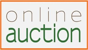 ONLINE SILENT AUCTION - TINNITUS ASSOC. Of SOUTH WESTERN ONTARIO London Ontario image 1