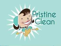 Looking for a Right-Hand/Cleaning Lady Assistant :)