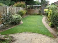 Local Mature Gardener Grass Cutting and Strimming Service