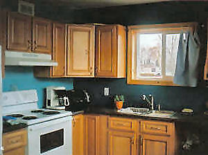 open christams/new yrs-largelk erie cottage pet friendly-8-15 sl