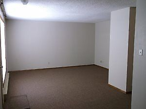 Spacious 1 Bedroom Apt. Suite Available