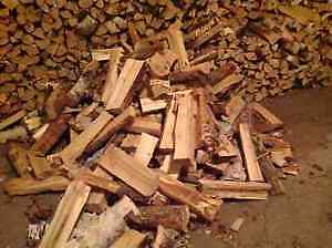 Birch Firewood Bags $35 *Real Pictures/Deliveries/Seasoned Birch Strathcona County Edmonton Area image 1