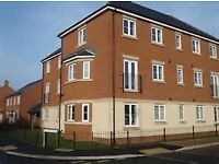 We present a double room to let in a professional house share in Devizes ref 1FR-2