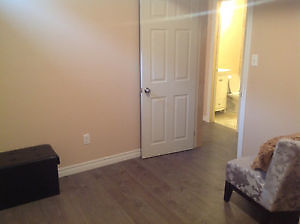 BRAND NEW BASEMENT SUITE NEVER LIVED IN Kitchener / Waterloo Kitchener Area image 2