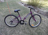 Small Adult, Purple SC1800 Mountain Bike, Excellent Condition