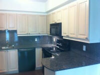 Beatiful condo in downtown Ottawa for rent.(Includes Parking)
