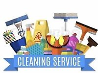 Deep clean Professional house/apt cleaners