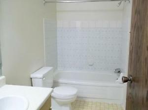 STUDENTS!  1 Bed $575/m with 8 Month Lease!