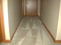 Shawn's Carpet & Upholstery Cleaning-25% OFF