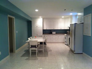 Large Apartment Martindale and QEW area - short term rental