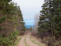 Investment Opportunity    Fundy View lot
