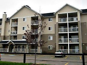 2bed / 2 bath condo for rent (available apr 1)