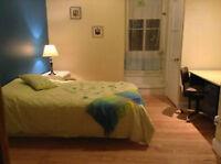 3 1/2 -2 chambres meublé/équipé/services/1 juin /Métro Papineau