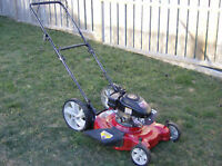 Lawn Cutting $15, Peterborough North End