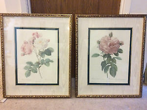 Framed Art 'The Rose' and 'Rosa Damascena' (The Bombay Company)