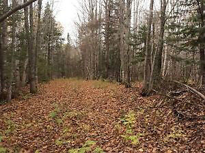 Many pieces of land for sale