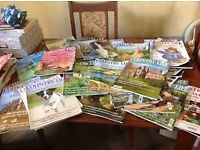 43 Country Life magazines (all 2014)
