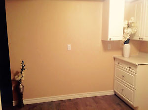 BRAND NEW BASEMENT SUITE NEVER LIVED IN Kitchener / Waterloo Kitchener Area image 4