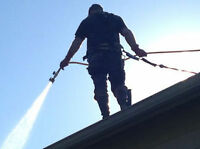 GUTTER,ROOF,LAWN,HEDGE CLEAN/FIX/TRIM || PRESSURE WASH, DISPOSAL