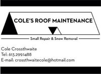 Cole's roof maintenance -roofing repairs