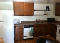 2 bedroom apartment Grand Falls-Windsor