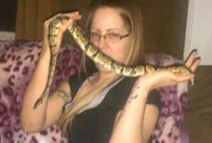 Bonjour je vend Mon python negotiable