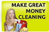 Make Great Money Cleaning with DeLuux.com