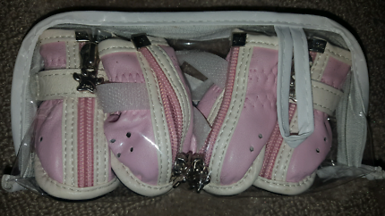 Pink Chihuahua or puppy booties