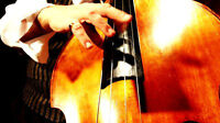 Upright Bassist Wanted for Charity Gala