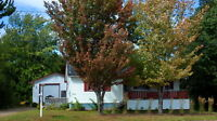 Rare find! Bungalow on a large lot with 24X36 detached garage!