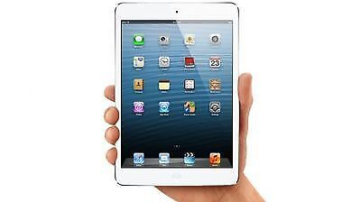 Alternativ: das iPad Mini