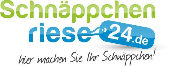schnaeppchenriese24-online