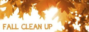 Professional Fall Cleanup $80-$100 226-700-1484 London Ontario image 2
