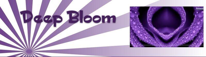 DeepBloom