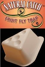 3 Natural Catch Fruit Fly Control Traps  Organic Trap ()