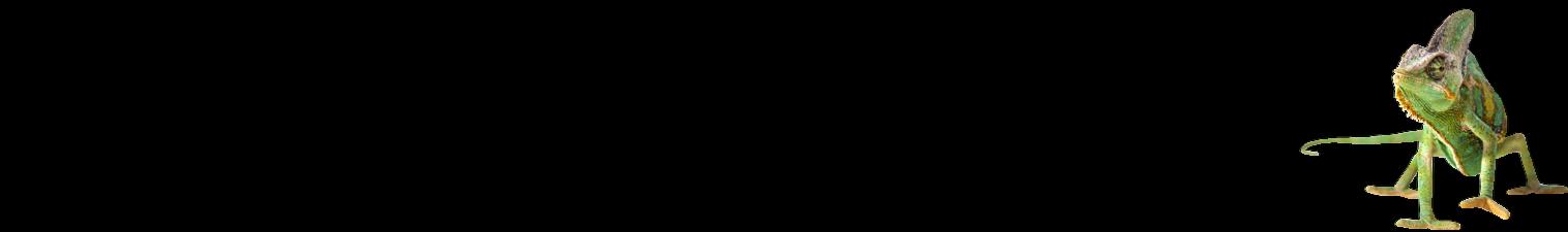 Chameleon LEDS