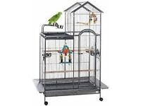 Large Parrot cage for quick sale