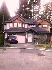 Stunning Furnished Garden Suite in New House - North Van #620 North Shore Greater Vancouver Area image 10